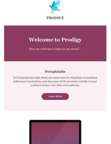 Prodigy-hubspot-email-template