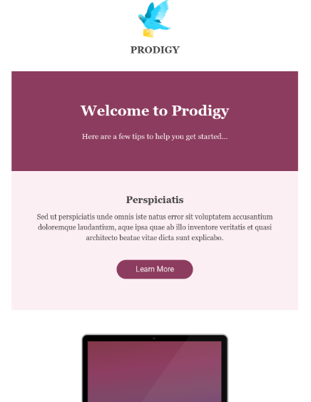 Prodigy Hubspot Email Template