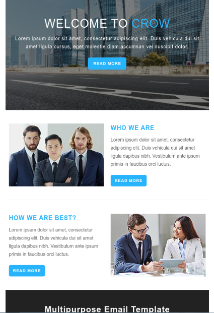 Crow Responsive Hubspot Email Template