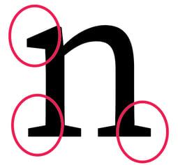 detailed-anatomy-serif