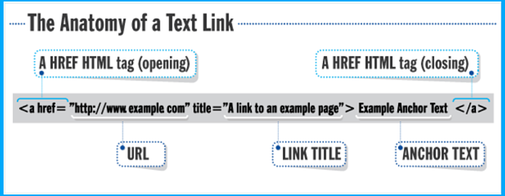 graphic-showing-anatomy-of-a-link