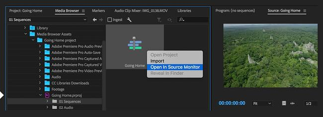 Import your media files to your software