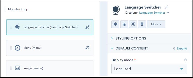 language-switcher-module