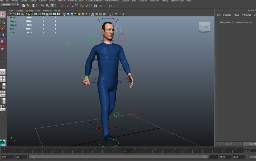 model in animation