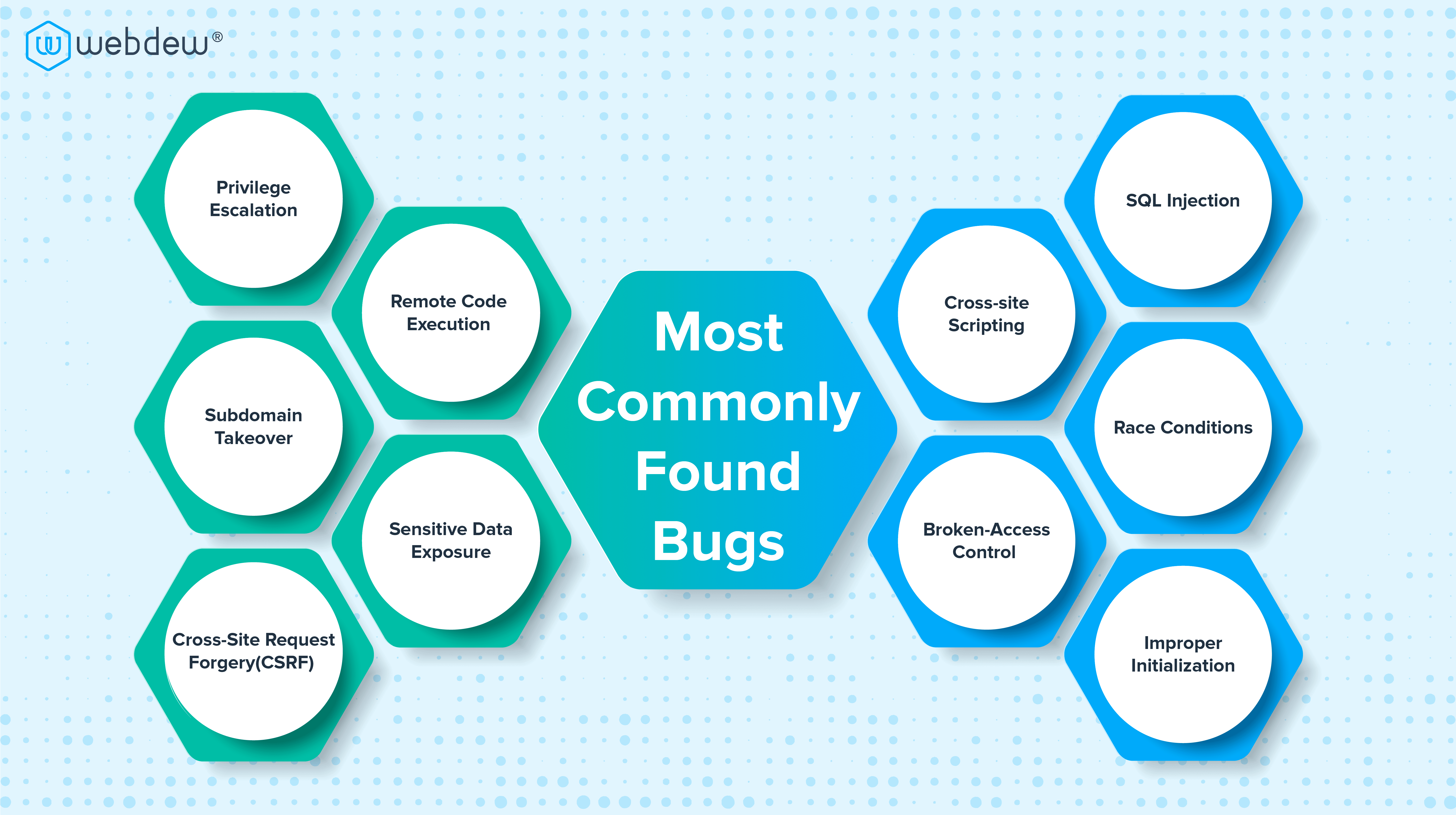 most commonly found bugs