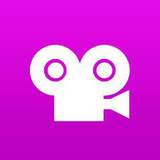 Stop motion studio pro logo