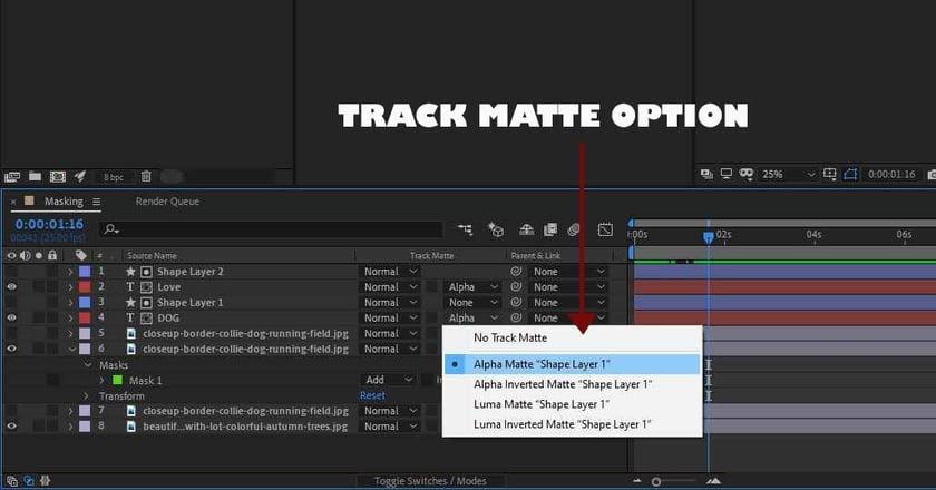track-matte-options