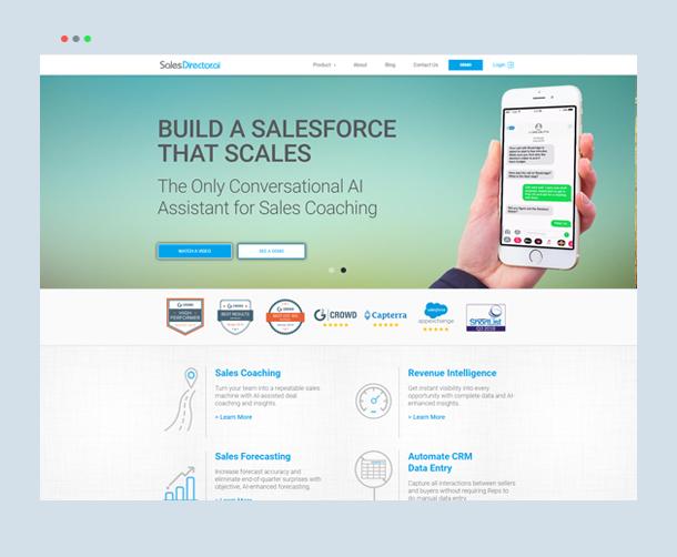 Webdew Portfolio - Sales Director