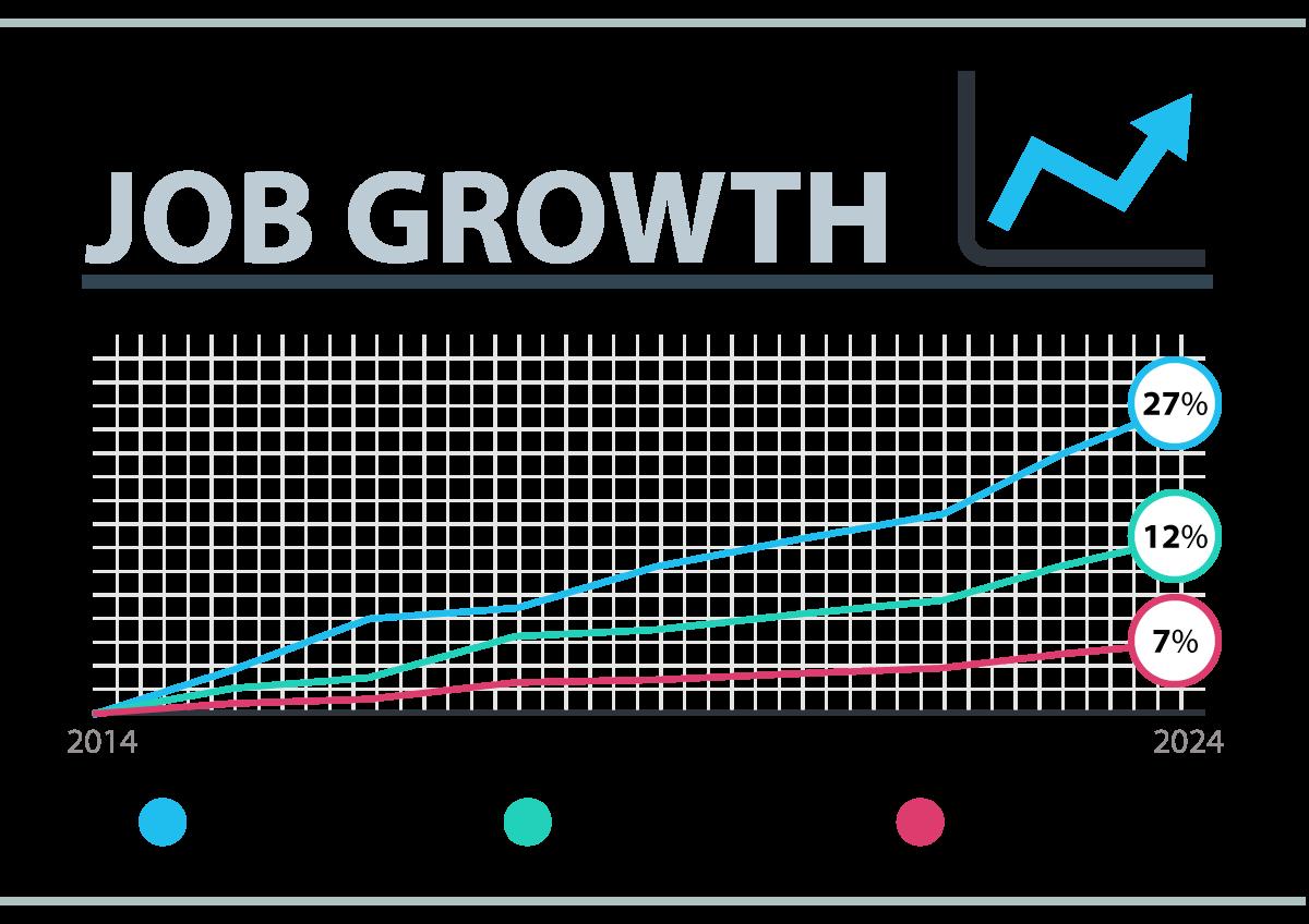 Web Developer Job Growth