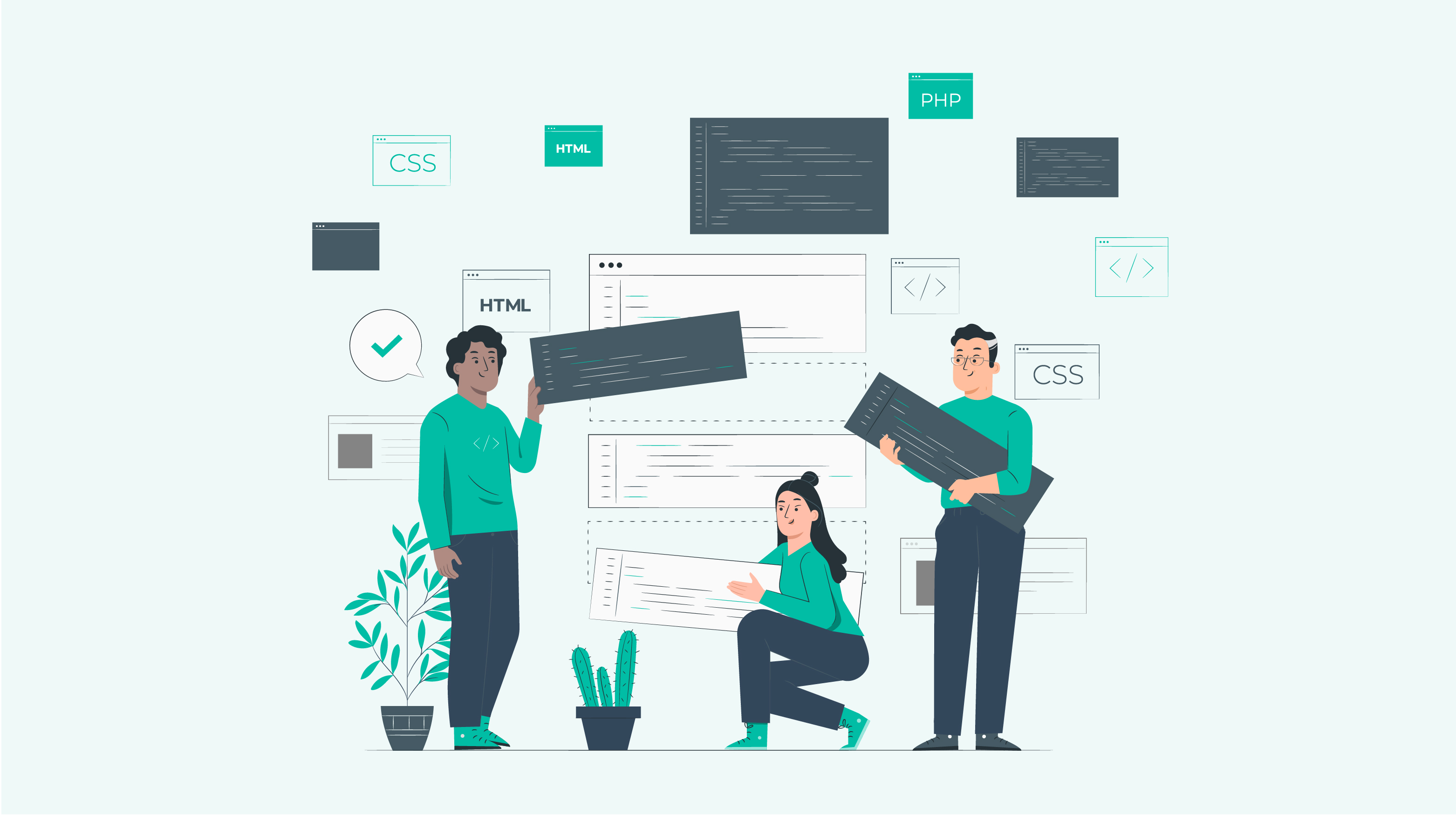 Web Development vs Software Development All you need to know